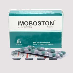 IMOBOSTON H/100v